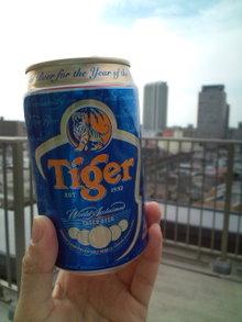 20100508_tiger